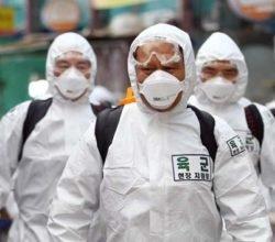 В чем успех стратегии Южной Кореи по борьбе с коронавирусом