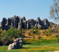 Каменный лес Шилинь в Китае - первое чудо света