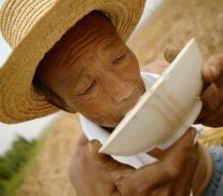 Китайцы и горячая вода - почему китайцы пьют горячую воду?