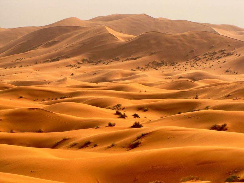 Пустыня Такла-Макан в Китае