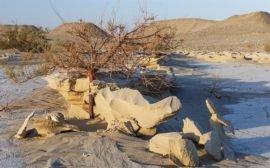 Загадка пустыни Такла-Макан в Китае